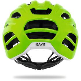 Kask Caipi Casco, green